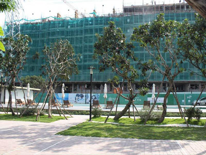 Tiến độ dự án căn hộ Flora Anh Đào 2