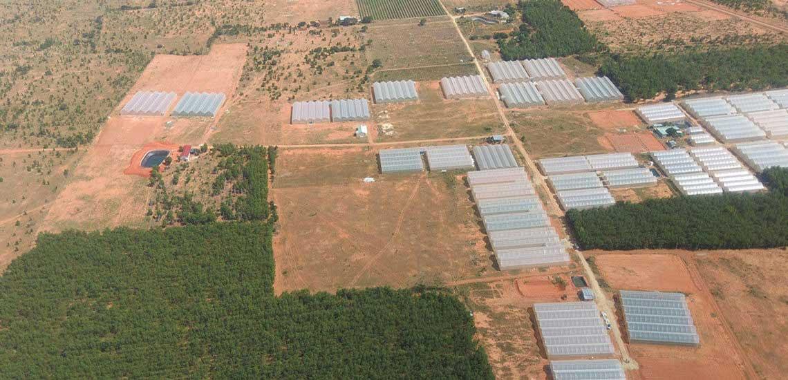 Hình thực tế dự án Nam Á Garden -Hình 9