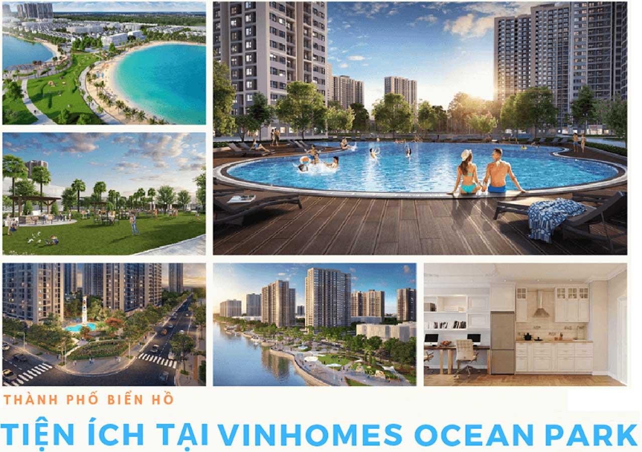 Cho thuê Căn hộ Vinhomes Ocean Park-Tiệ ích nội khu
